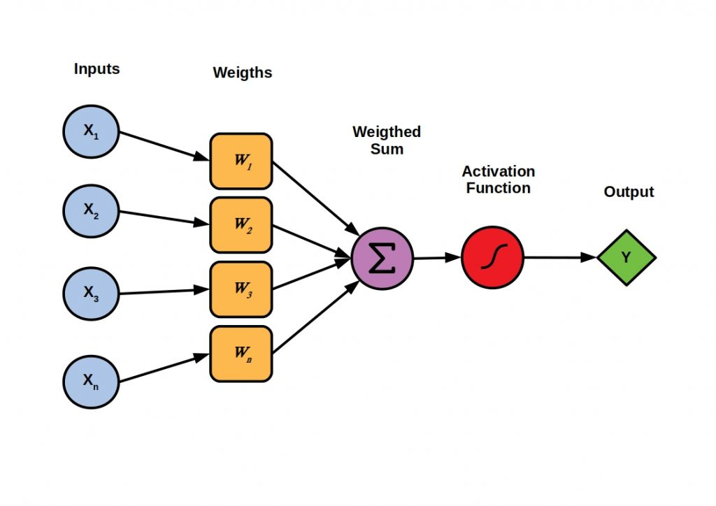 The figure shows the sequence of the training of a neural network